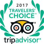 tripadvisor travelers choice awards